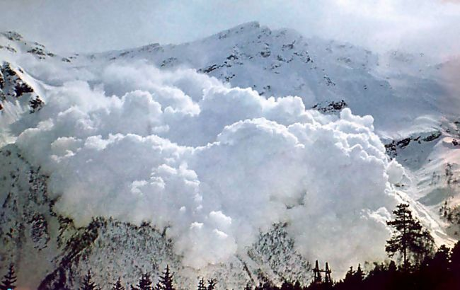 Фото: сход лавины