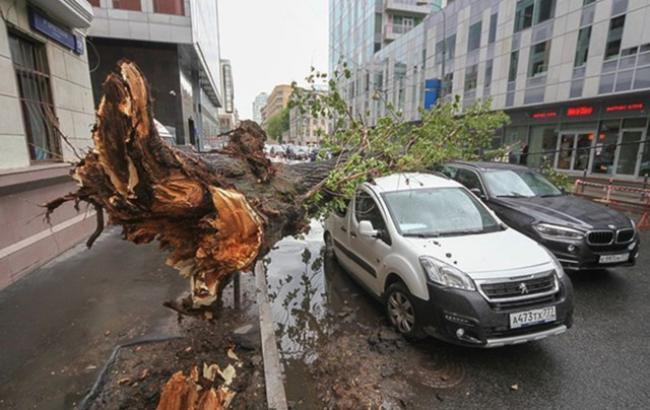 На российскую столицу обвалился сильнейший циклон: минимум 11 погибших