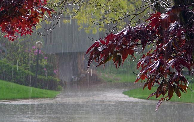 Пройдуть грози: синоптики уточнили прогноз погоди на 1 липня