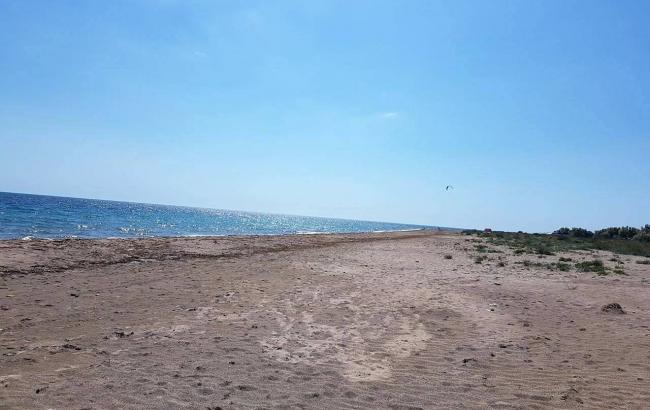 Фото: Пляж в Молочному, Сакський район, Крим. Знімок був зроблений в червні 2017 (Осман)