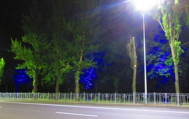 В Киеве на одной из набережных включили подсветку деревьев