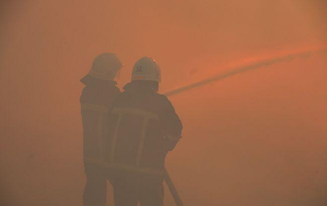 Масштабна пожежа під Миколаєвом: з'явилося відео, як рятували унікальний заповідник