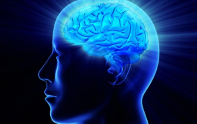 Ученые впервые зафиксировали работу человеческого мозга после смерти