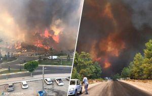 Курорты в огне и эвакуация туристов. В Турции продолжаются масштабные пожары: что известно