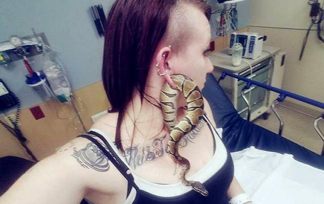 Фото: Змея застряла в ухе