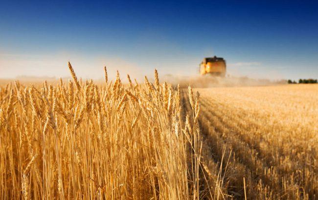 Мировые цены на продовольствие перешли к росту