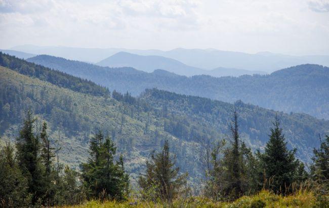 Таинственные тропы, водопад и дворец: путеводитель по Сколевским Бескидам