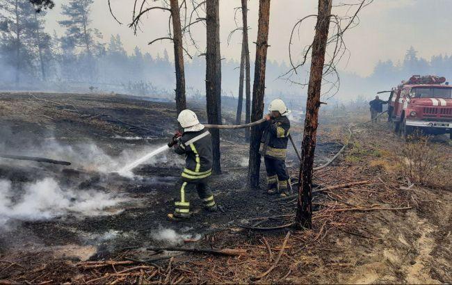 На пожарах в Луганской области обнаружили останки трех человек