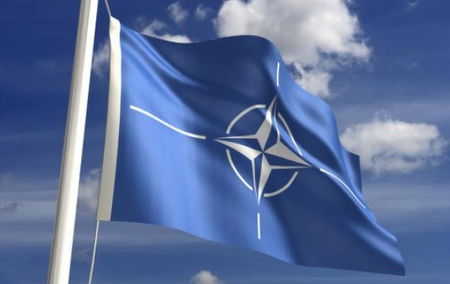 "Фото: НАТО организует ""горячую линию"" с РФ"