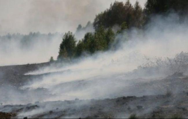 В Черниговской области спасатели продолжают тушить около 12,8 га тлеющего торфа