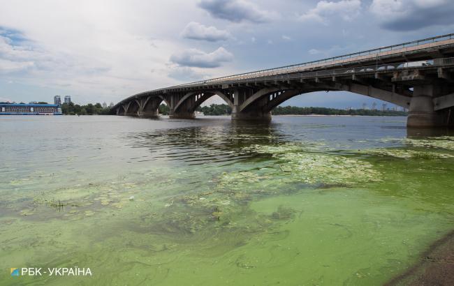 Кожного літа багато цвіту: чому Дніпро зеленіє і чим це небезпечно