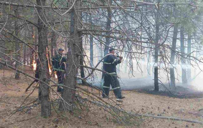 Спасатели предупреждают о повышенной пожарной опасности в 13 областях страны