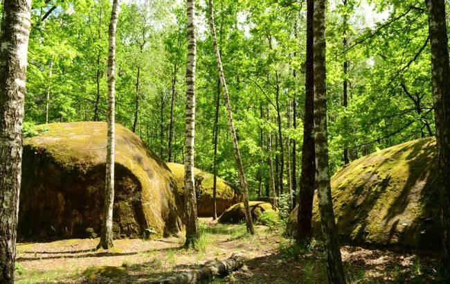 """Вчені намагаються розгадати загадку """"Камінного села"""" в Житомирській області"""