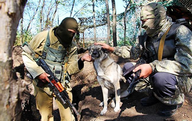Фото: украинские военные (facebook.com/theministryofdefence.ua)