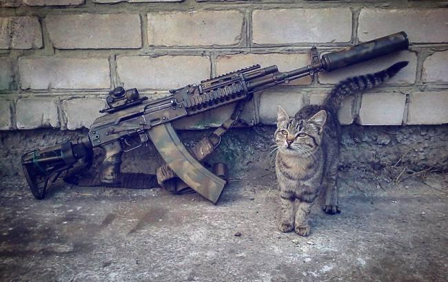 """""""Зніми килимок. Погодуй кота"""": як українські військові передають послання бойовикам"""