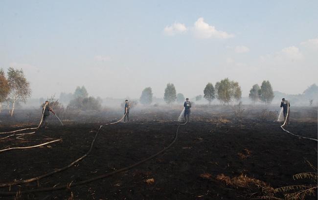 Фото: ліквідація горіння сухої трави