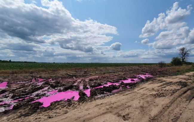 Розовые лужи химикатов под Ровно: полиция открыла уголовное производство
