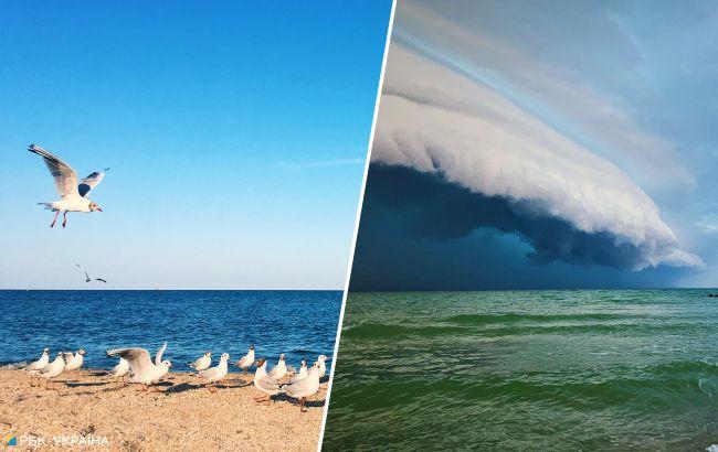 """Море очищается. Грозы и штормы """"прогоняют"""" медуз на украинских курортах"""