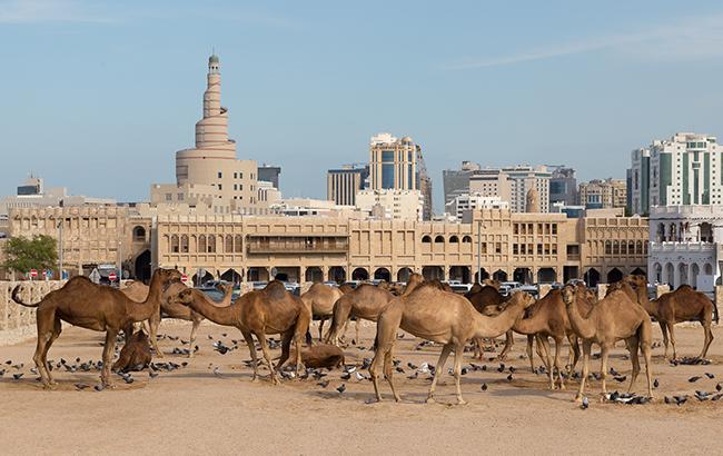 ВСША призвали арабские страны к разговору сКатаром