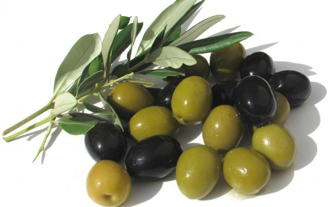 Диетологи рассказали о пользе оливок для здоровья