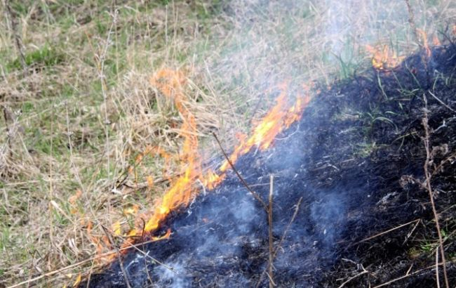 Фото: в Киеве ожидается чрезвычайная пожарная опасность