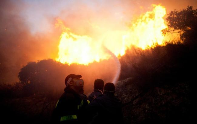 Фото: Турция направила самолет для тушения пожаров в Израиле