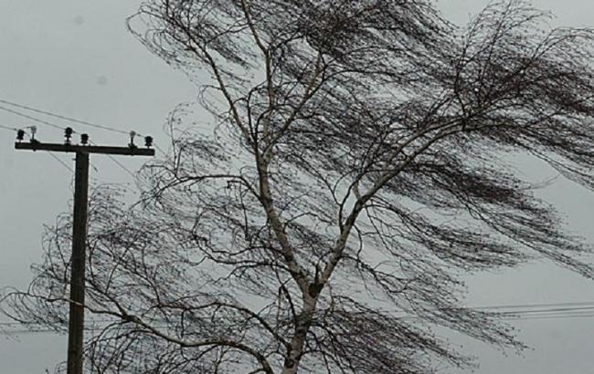 Фото: в Украину идут грозы и шквальный ветер