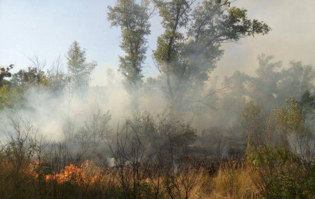Фото: на Трухановом острове горел травяной настил