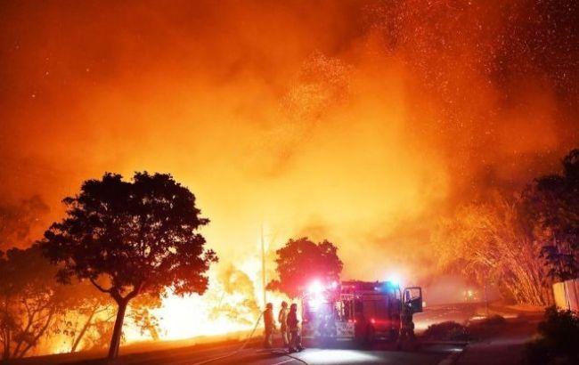 Штат в Австралии ввел режим ЧС из-за лесных пожаров: более 150 разрушенных домов и огненные торнадо на полях