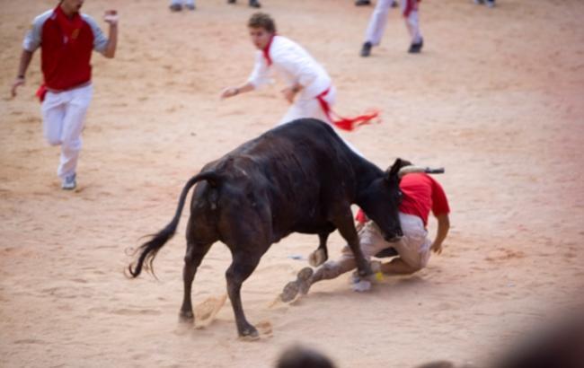 Бык стащил трусы с посетителя корриды в Испании
