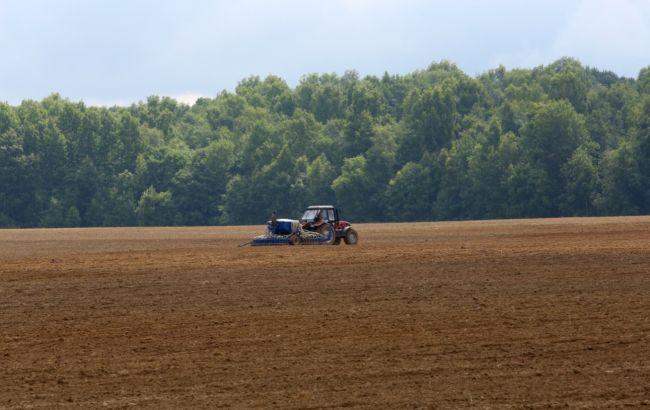 Рынок земли в Украине: в Минагрополитики назвали количество сделок по продаже