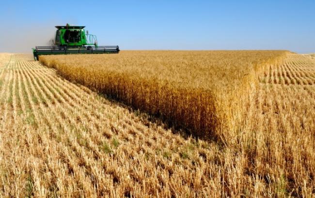 Росія вводить експортне мито на пшеницю
