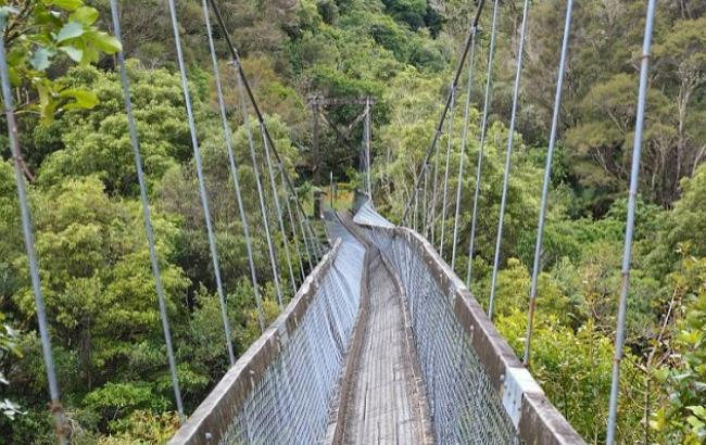 В Новой Зеландии оборвался мост, на котором находились туристы