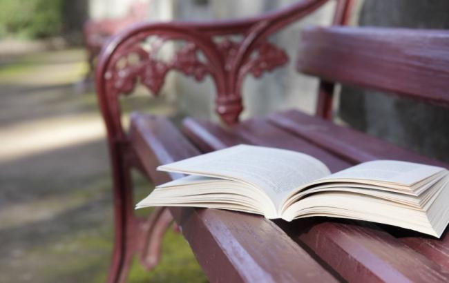 Француженку оштрафовали за оставленную на улице книгу