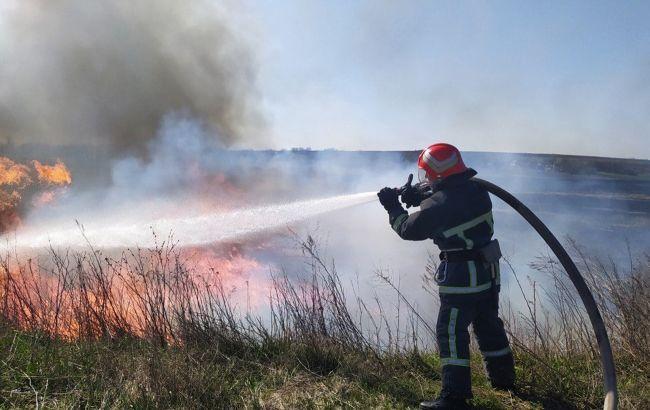 Синоптики попередили про пожежну небезпеку: в яких областях