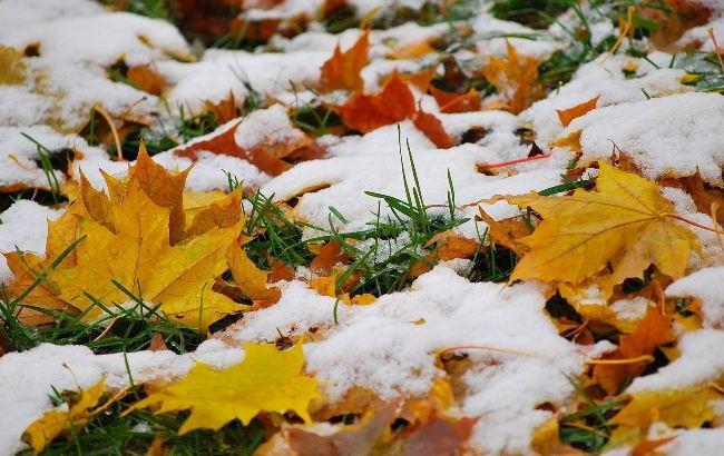 Фото: В Харькове выпал снег (vesti-ukr.com)