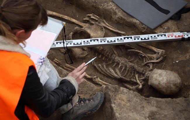 Фото: Археологические работы проходят в Винницкой области (РБК-Украина)