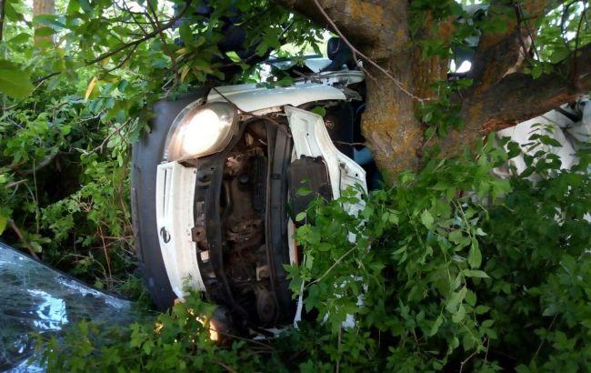 В Николаевской области микроавтобус врезался в дерево, погибли 5 человек