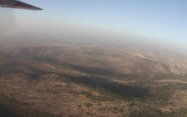 Фото: лісові пожежі в Ізраїлі