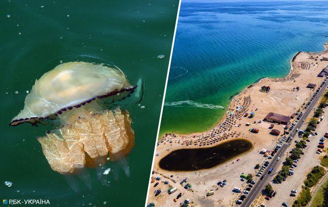 Высокие цены, медузы и хайп. Почему Украина уже вскоре может потерять курорты Азовского моря