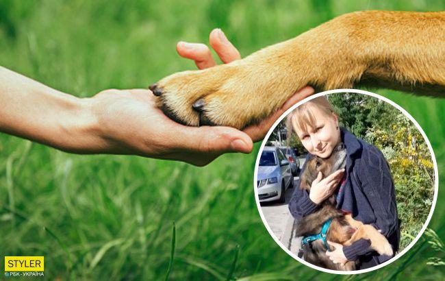 Киевлянка нашла своего пса через 11 лет: невероятная история преданности