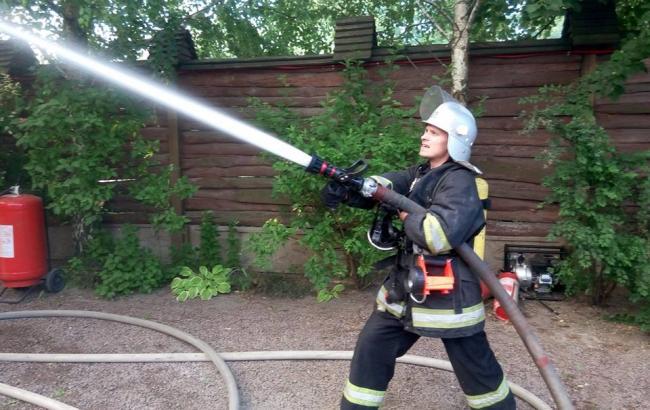 В Киеве возник пожар в лесопарковой зоне
