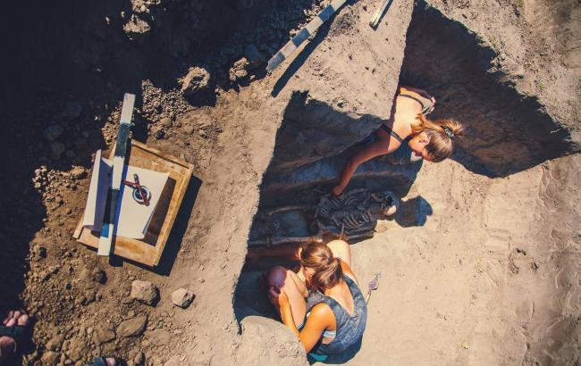 У Запорізькій області знайшли скелет стародавнього охоронця (відео)