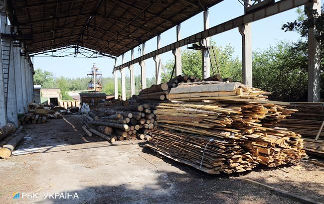 """Науковець Ігор Загороднюк: """"Європа всіляко сприяє тому, щоб ми свій ліс різали і їм продавали"""""""