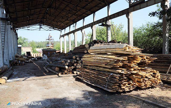 В Австрии призвали Украину отменить запрет на экспорт леса