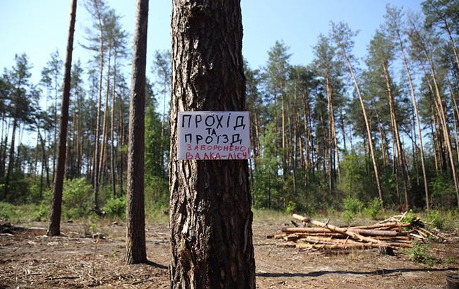 """""""Должен быть баланс"""": эксперт предупредила об угрозе экологической катастрофы в Украине"""