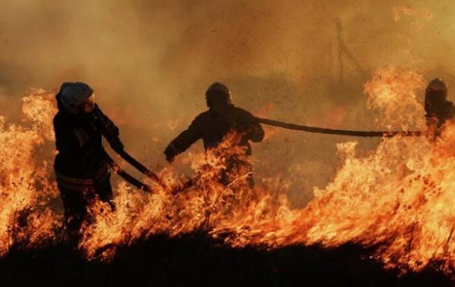 От пожаров в Забайкалье пострадали более 21 тыс. человек