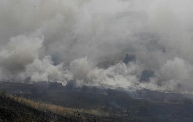 Пожежа сухої трави в Миколаївській обл. ліквідовано, - ДСНС