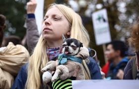 Фото: Всеукраинский марш за права животных прошел в 17 городах (РБК-Украина)