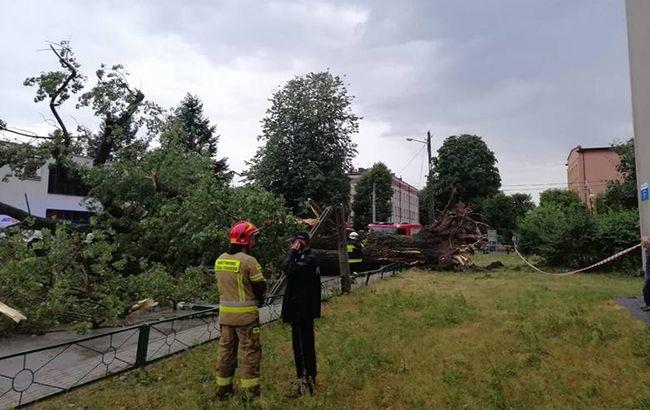 В Польше из-за шторма перенесли авиарейсы